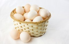 烘焙原料-鸡蛋