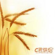 全国冬小麦因旱受灾3939万亩 农业部要求各地抗旱