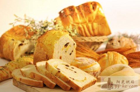 从头开始做面包——面包新手攻略(面包基础知识详解)
