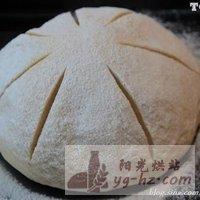 特浓牛奶香味的面包的做法图解9