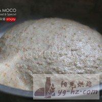 天然酵母-葡萄干全麦面包的做法图解6