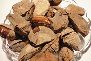 <b>烘焙原料-巴西坚果的知识介绍</b>