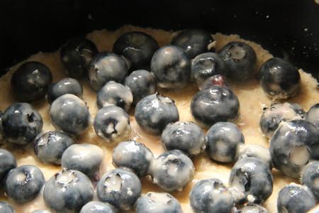 蓝莓酥粒小方块Blueberry Crumber Bars的做法 步骤4