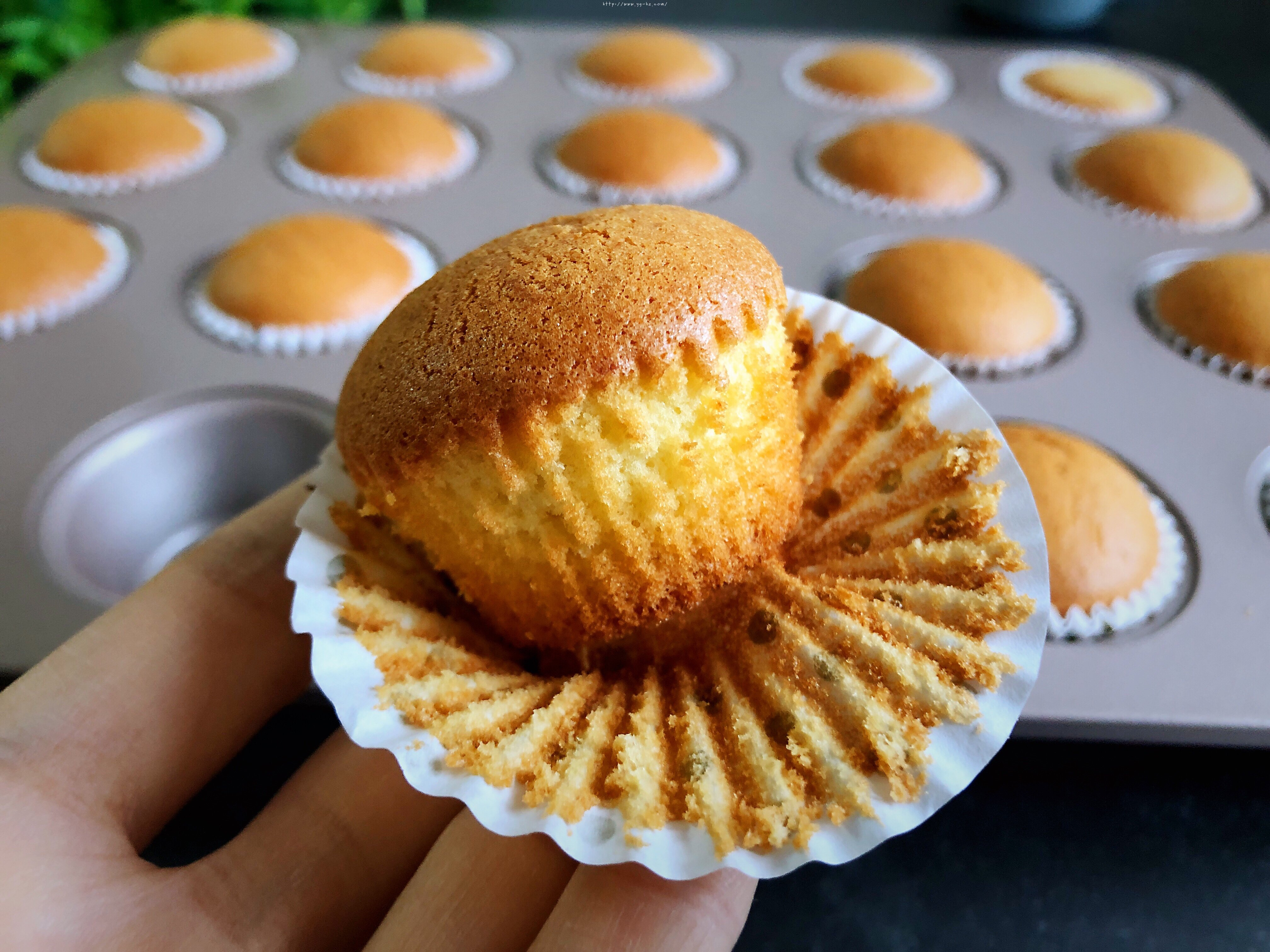 老式无水小蛋糕不塌的秘诀,此配方蓬松暄软甜度适中,成功率高的做法 步骤10