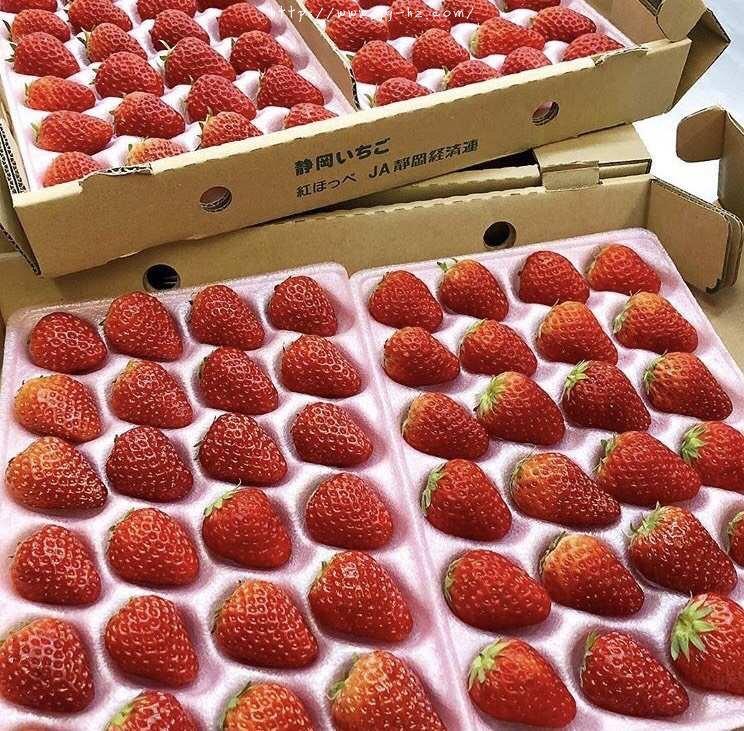 松软不开裂的日式草莓蛋糕卷的做法 步骤21