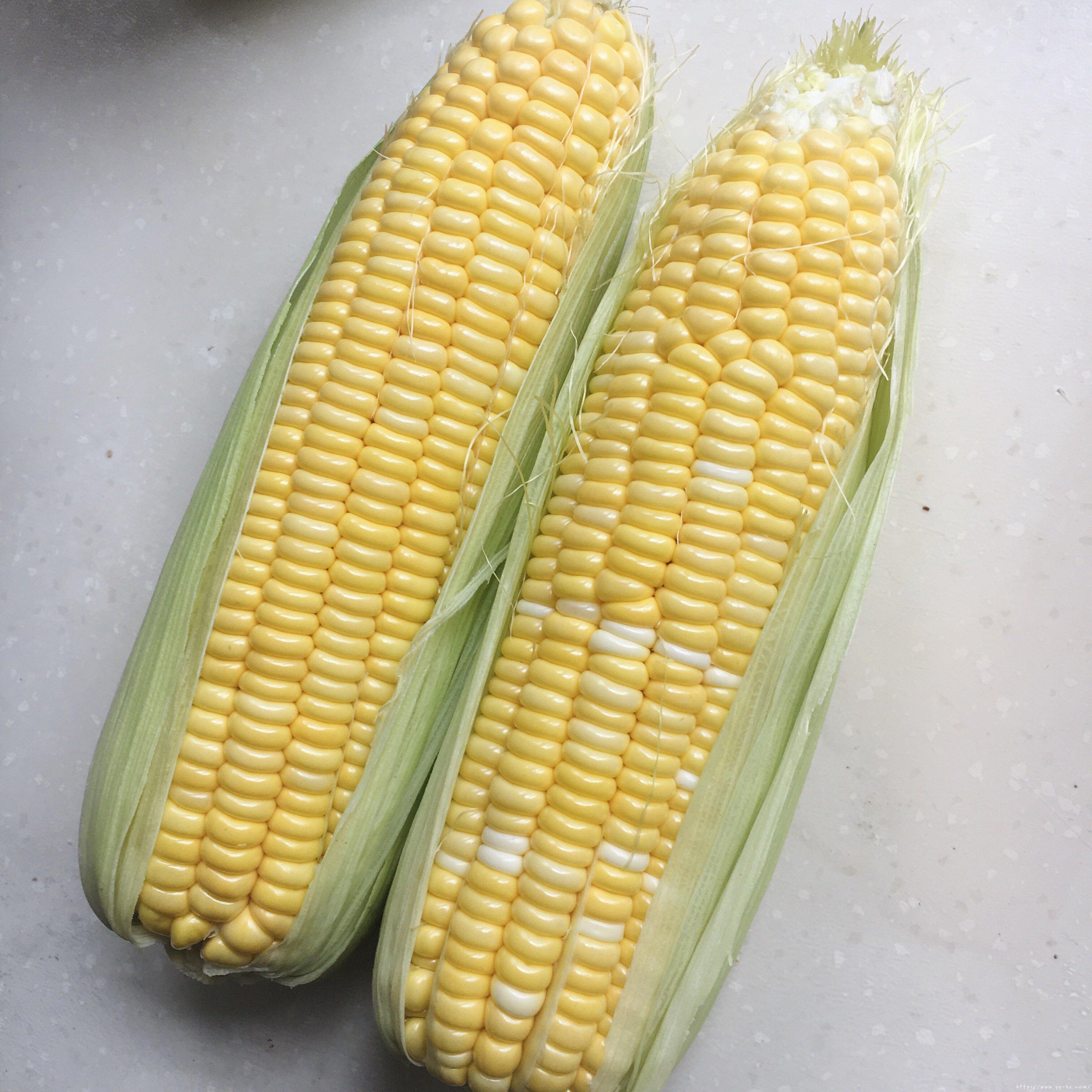 蒸鲜玉米糕一一玉米粑粑的做法 步骤1